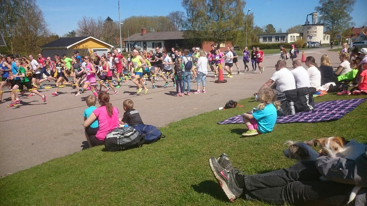 Gullviveloppet startar och slutar vid Brösarps skola.