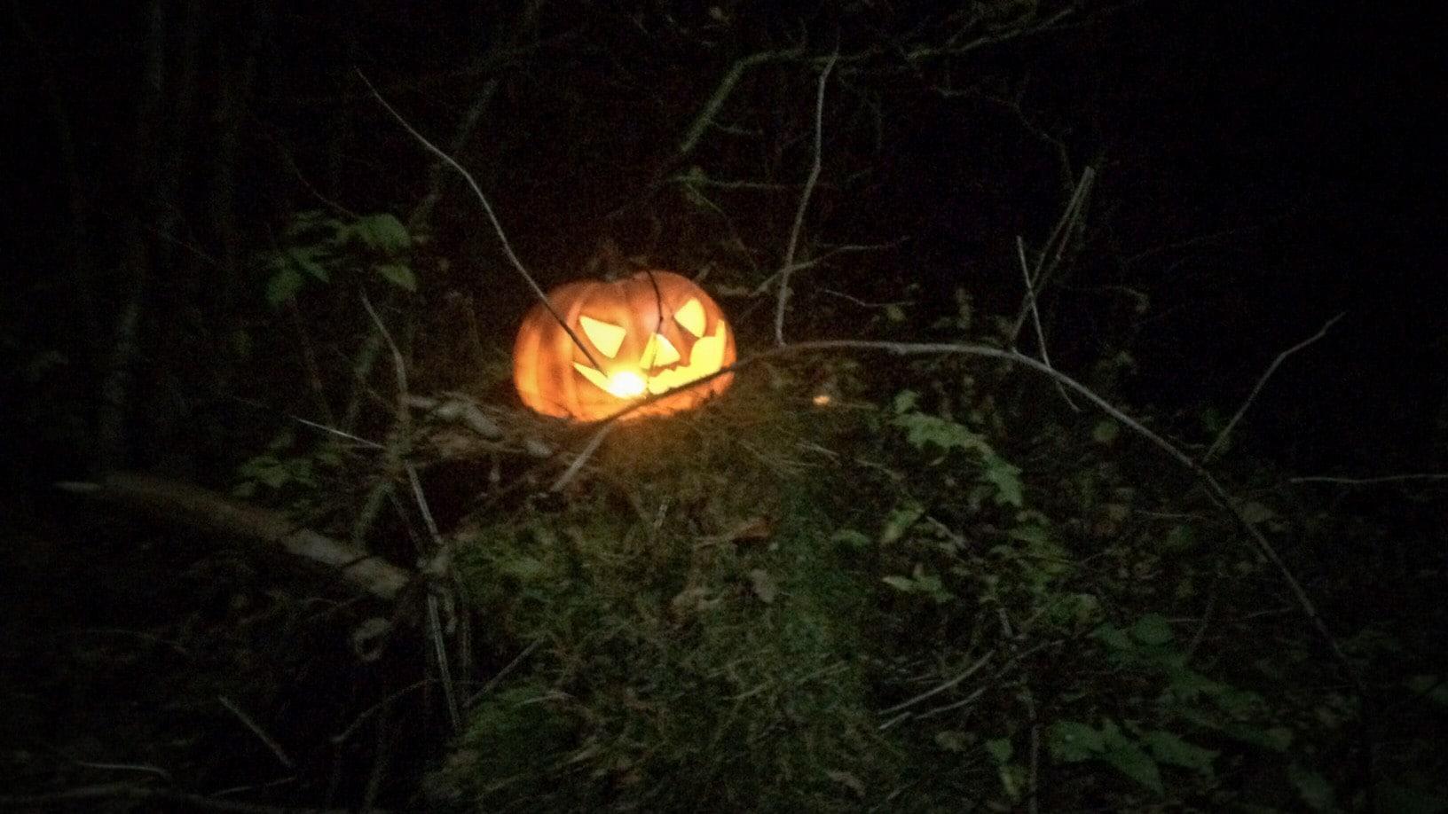 Halloweenpumpa i Källaskogen.